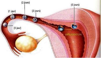 Pourquoi bolyat les muscles du cou comme traiter